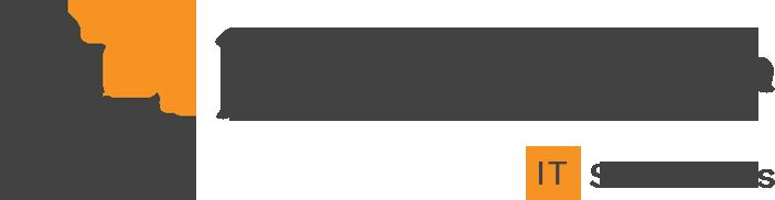 Namaskar IT Solutions Logo