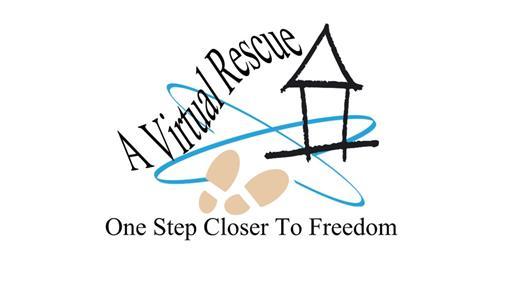 A Virtual Rescue Logo
