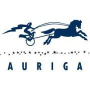 Auriga, Inc. Logo