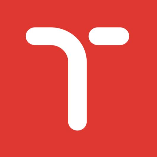 Temy Logo