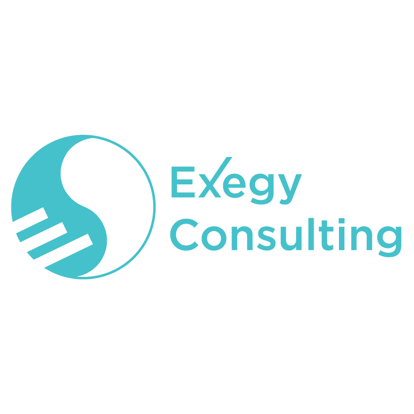 Exegy Consulting Logo