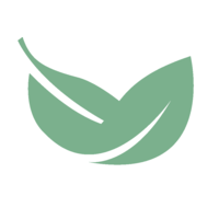 Bay Leaf Digital Logo