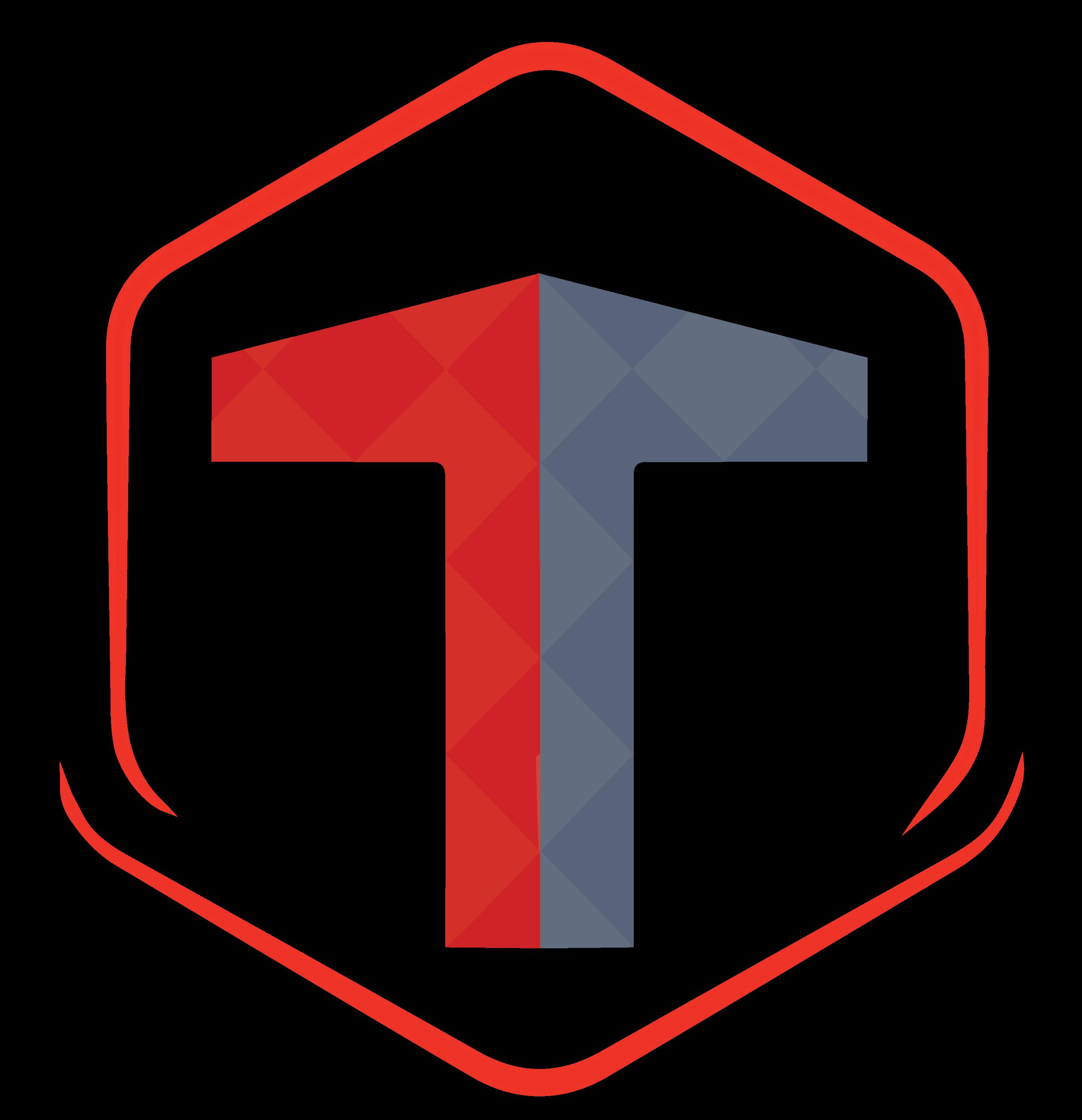 TechnoSavvy Solutions Logo