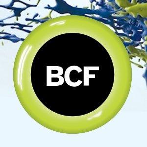 BCF Agency logo