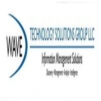 Wave Technology Solutions Group Logo