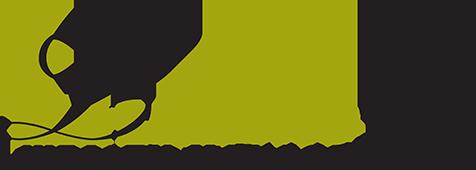 Leivas Tax Wealth Management Logo