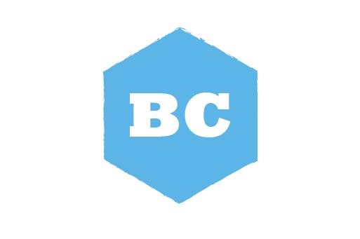 BluChip Solutions LTD