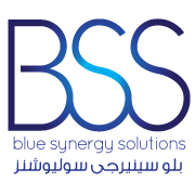 Blue Synergy Solutions Logo