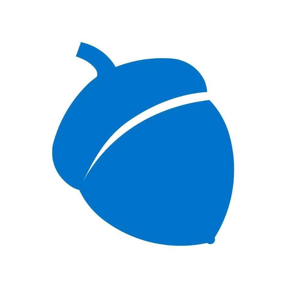 Blue Acorn ICI Logo
