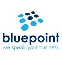 Blue Point Telecom Logo