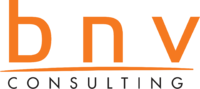 BNV Consulting Logo