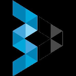 Brainvire Infotech Inc Logo