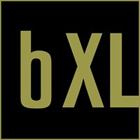 Brand XLerator