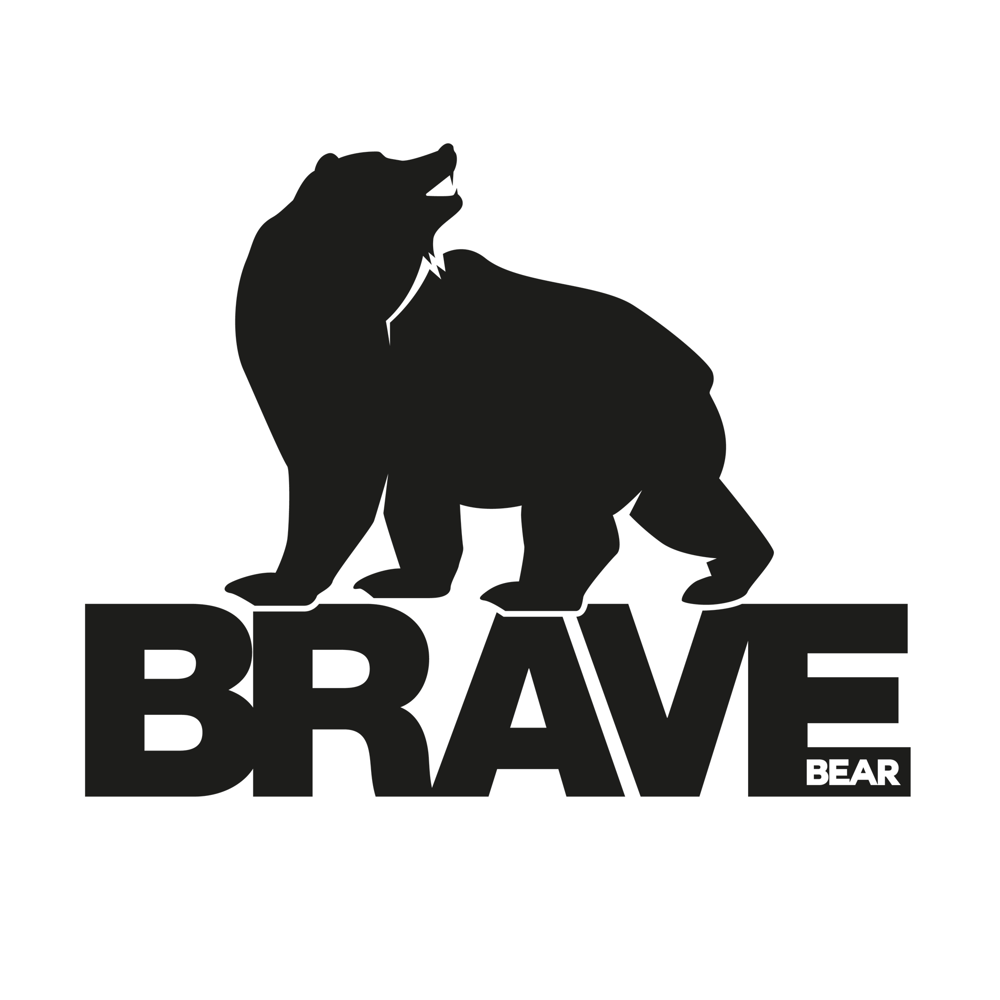 Brave Bear Marketing Ltd Logo