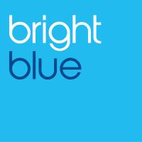 Brightblue Consulting Logo