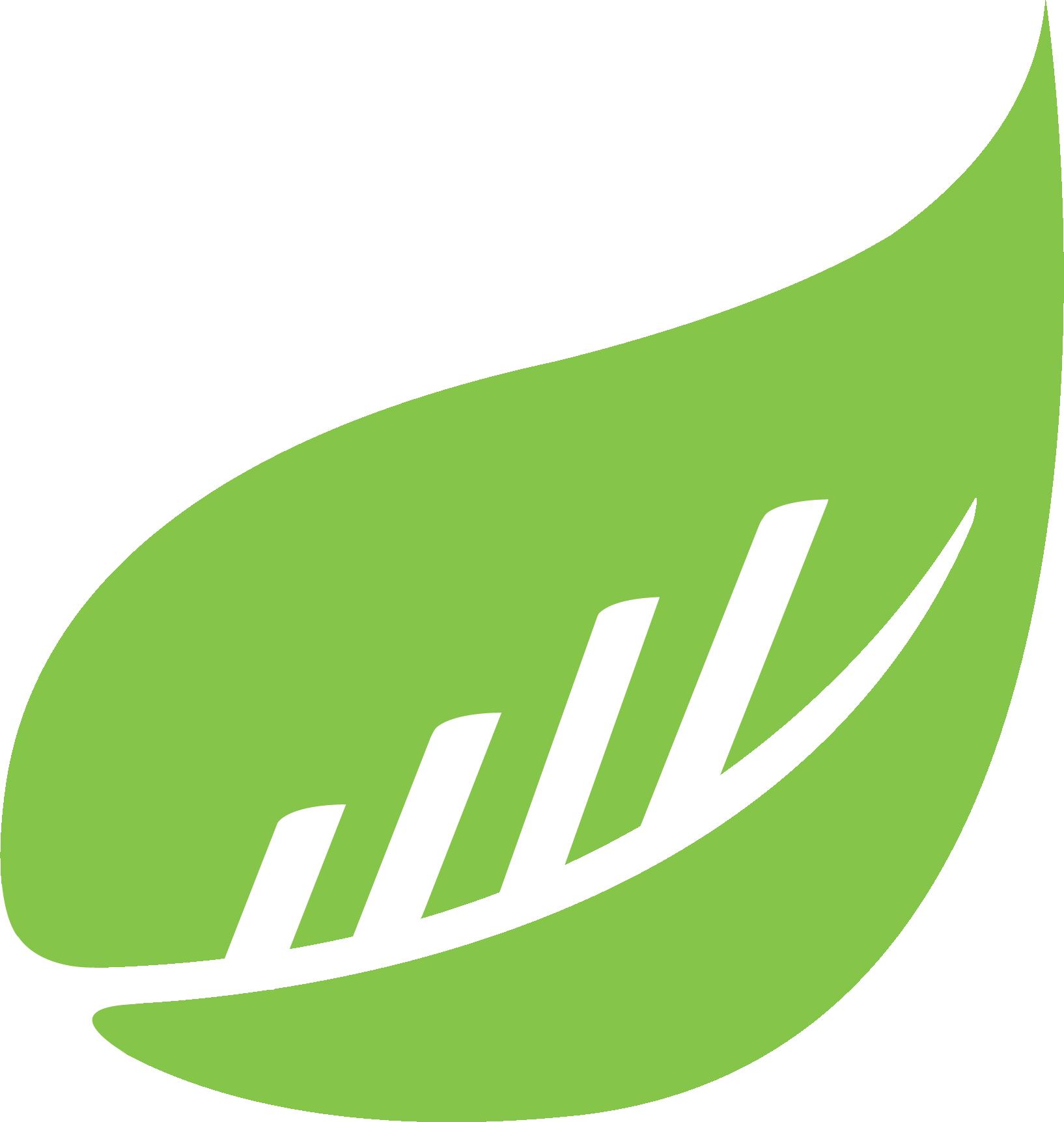 BusySeed Logo