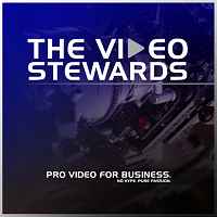 The Video Stewards Logo