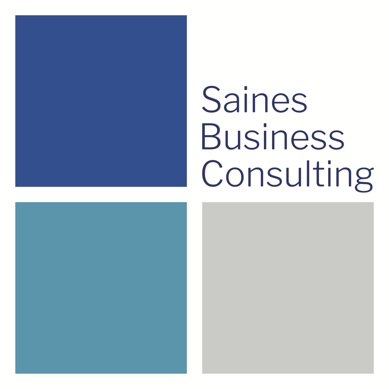 Saines Business Consulting Logo