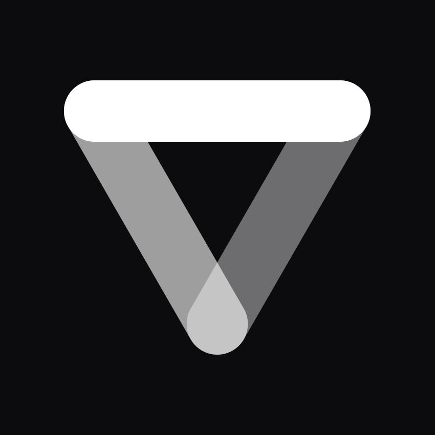 vinille Logo