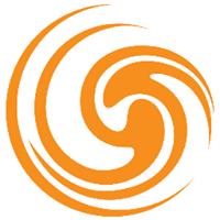 Celerity Information Services Logo