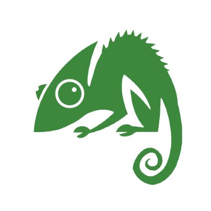 Chameleon Web Services Logo
