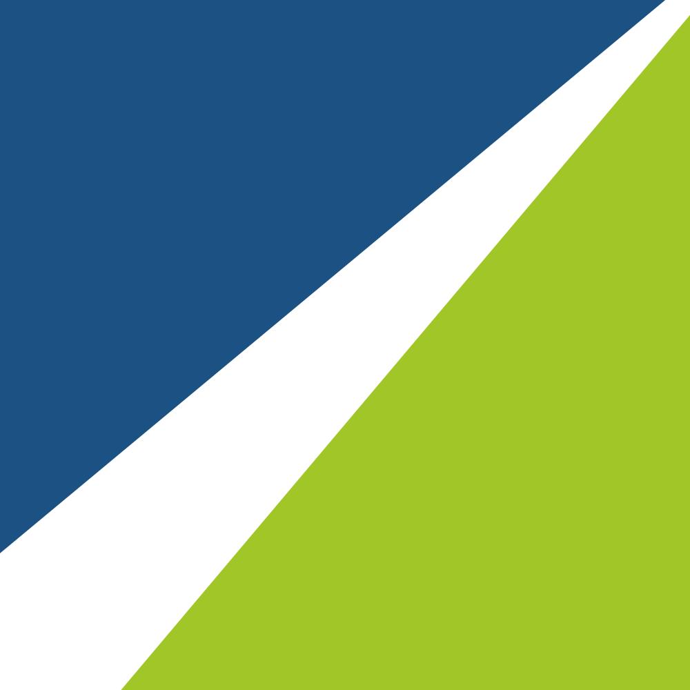 SEOptiks Logo