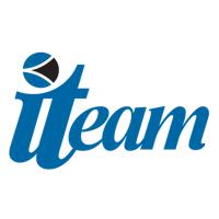 The ITeam Logo