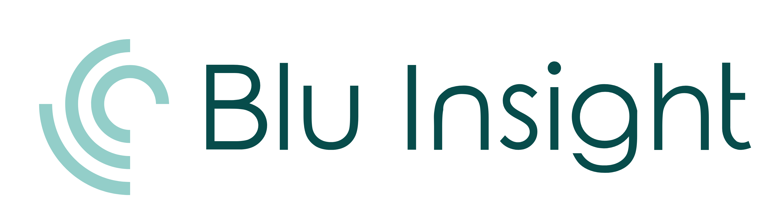 Blu Insight Logo