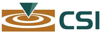 CSI Executive Search Logo