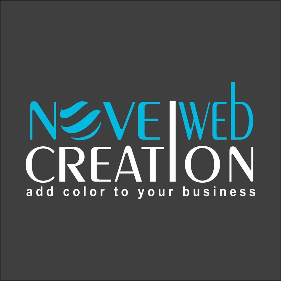 Novel Web Solution Pvt. Ltd. Logo