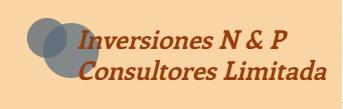 Inversiones N&P Consultores Limitada Logo