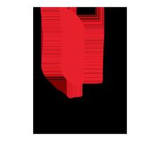 Insil Logo