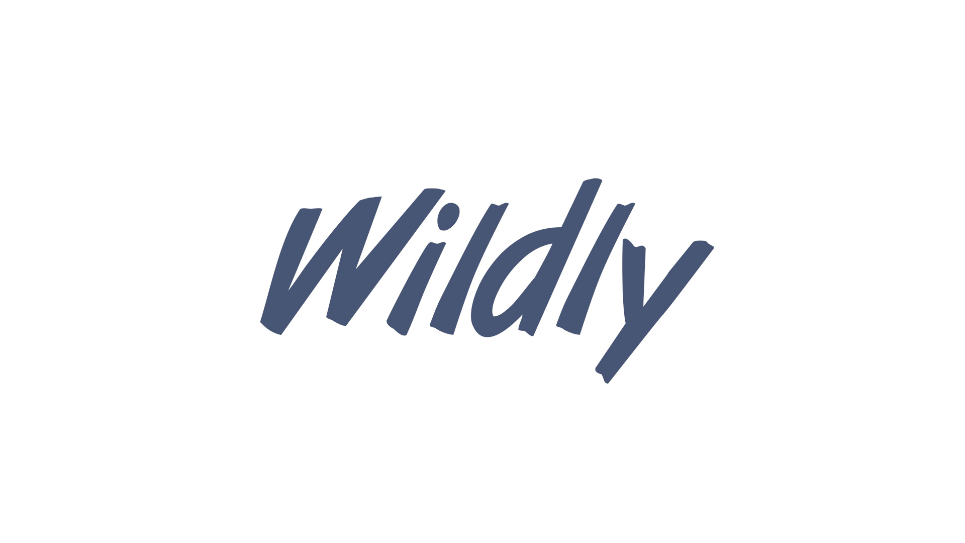 Wildly Logo
