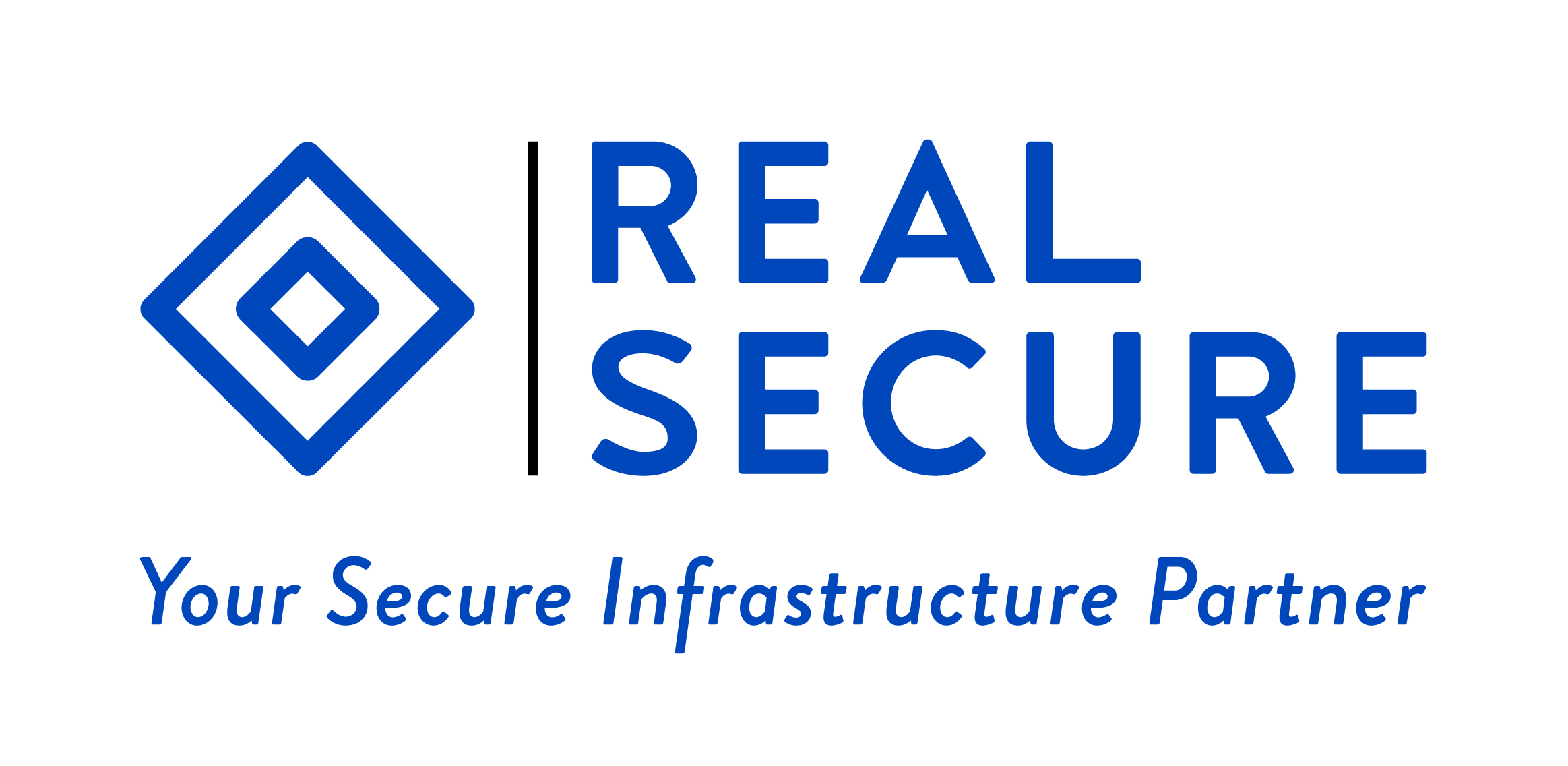 Real Secure IT Infrastructure LLC Logo