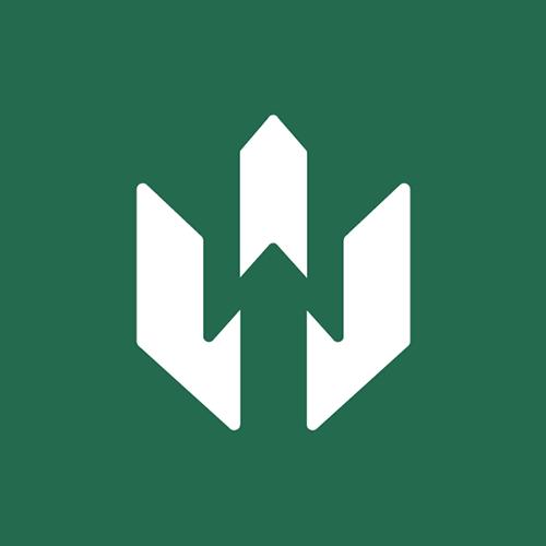 Frogslayer Logo