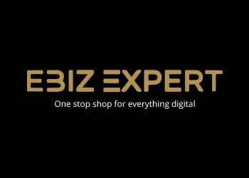 eBiz Expert Logo
