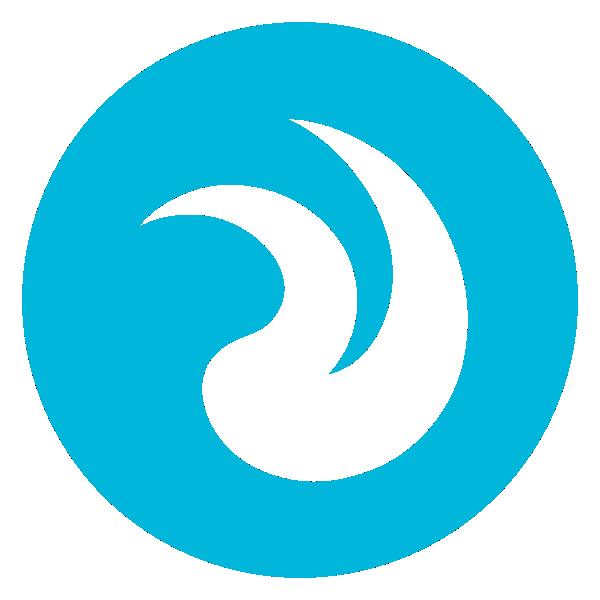Emvigo Technologies Ltd Logo