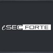 eSecForte Technologies Logo