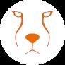Acinonyx Web Agency Logo