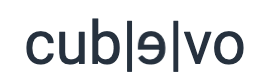 Cubevo Data Concept Logo