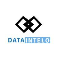 Data Intelo Logo