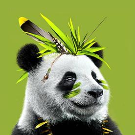 Bambuk Studio Logo