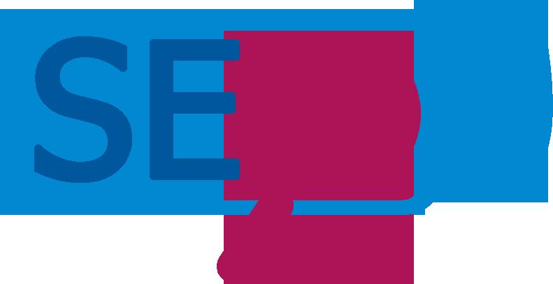 SEORAZ Logo
