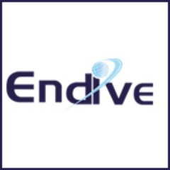 Endive Software Logo