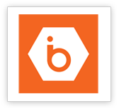 IBEE Hosting Logo