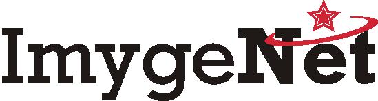 Imyge Net Logo
