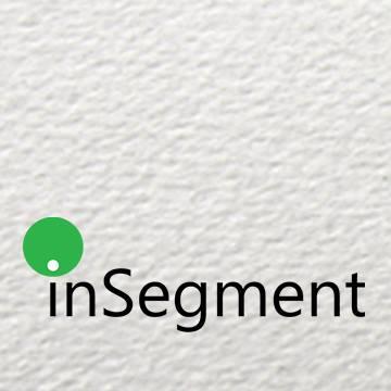 inSegment Logo