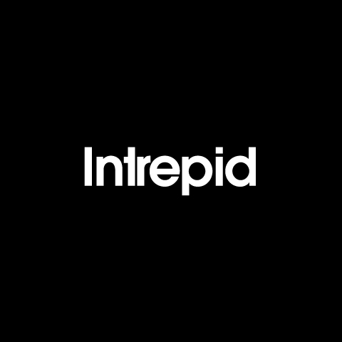 Intrepid Technology Logo