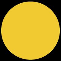 IPNY Logo