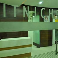 IT Niche LLC Logo